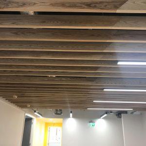 Ceilings & Lighting