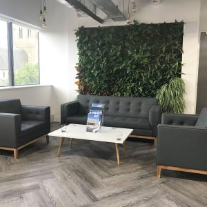 Biophilic office design
